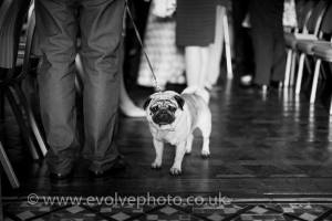 Huntsham court wedding  (5)